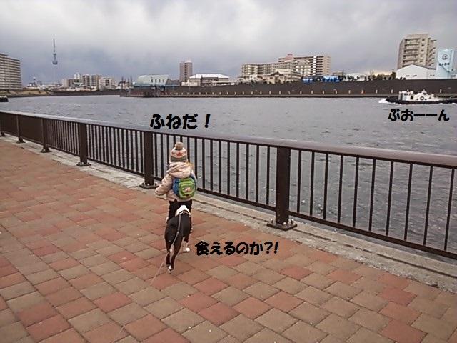 d0187891_155252.jpg