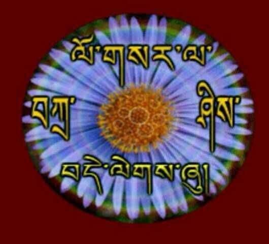 きょうはチベットのお正月です!_c0162404_23484571.jpg