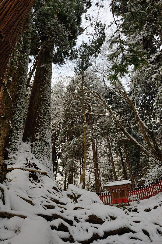 2015京の雪景色@貴船 其の三_f0032011_19461316.jpg