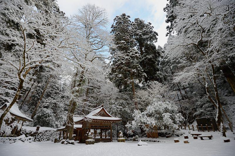 2015京の雪景色@貴船 其の三_f0032011_19522545.jpg