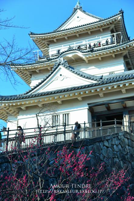 小田原城の梅、いざ!_c0250634_165868.jpg