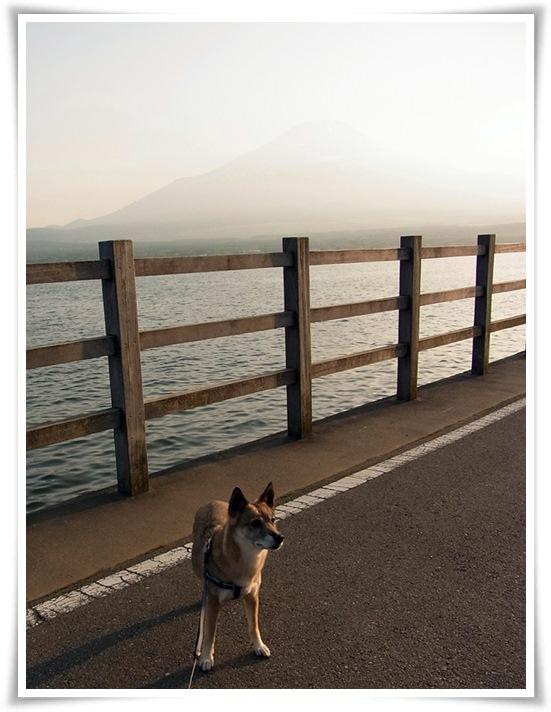 富士山_b0025947_2245446.jpg