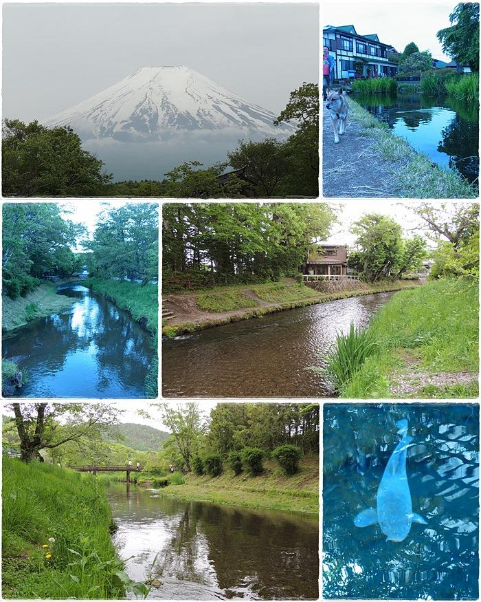 富士山_b0025947_22531378.jpg
