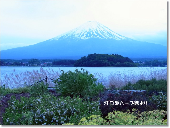富士山_b0025947_22542686.jpg