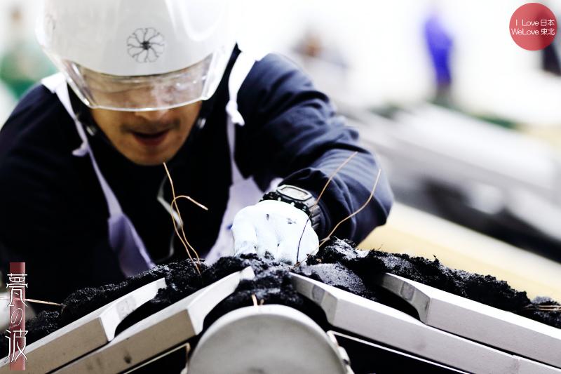 第28回 2015 技能グランプリ 「かわらぶき(瓦葺)」 富山県代表出場_b0157849_20050328.jpg