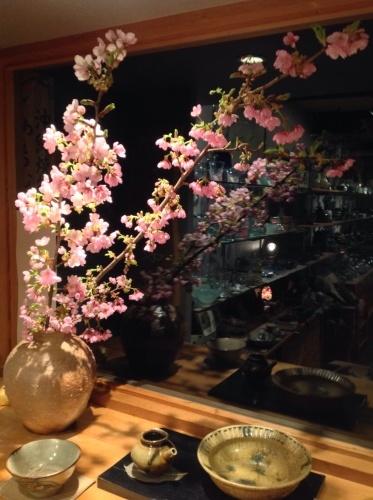 桜の絵が春を呼ぶ_b0153663_17233762.jpg
