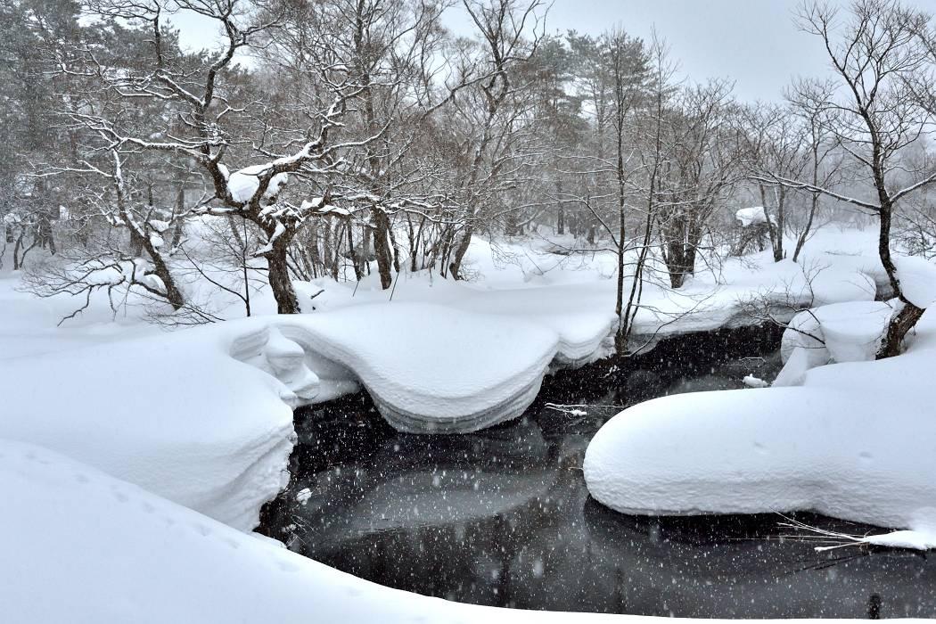会津の雪景色 ③_b0223668_13235922.jpg