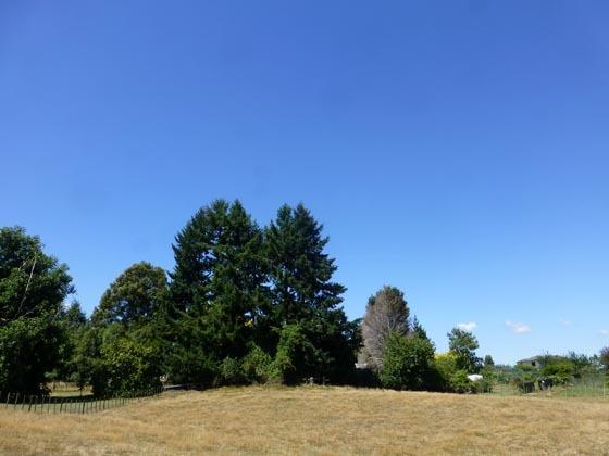 空はスカッと_e0133780_18590491.jpg