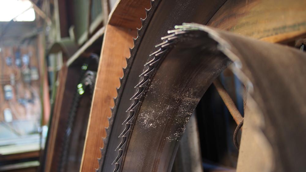 木の製材所見学_d0122640_15475363.jpg