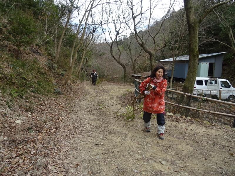 2mの根笹に挑戦・・・孝子の森_c0108460_20282183.jpg