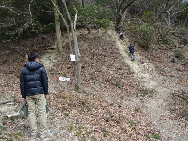 2mの根笹に挑戦・・・孝子の森_c0108460_20391409.jpg