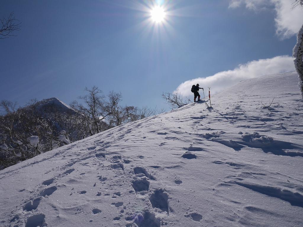 白老岳、2月20日-速報版-_f0138096_1556535.jpg