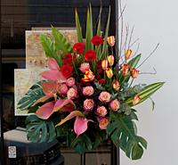 開店祝いのお花_c0114811_16362990.jpg