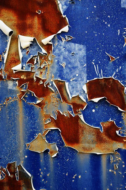 華集め・青い壁_f0032011_19373745.jpg