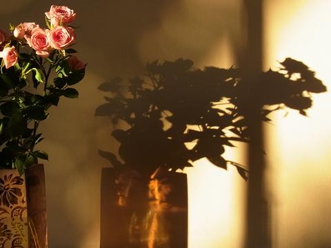 セピアの薔薇 ( Roses en Sepia ) …… 。_b0287748_0291654.jpg