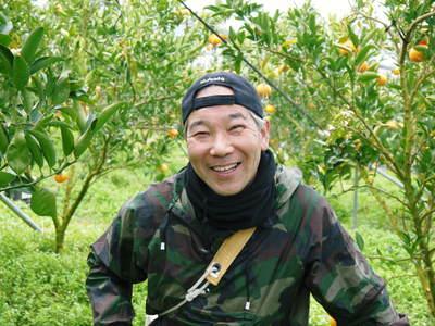 平成27年度 究極の柑橘『せとか』初収穫&初出荷しました!!(その2:今年のせとかも美味い!!)_a0254656_1895146.jpg
