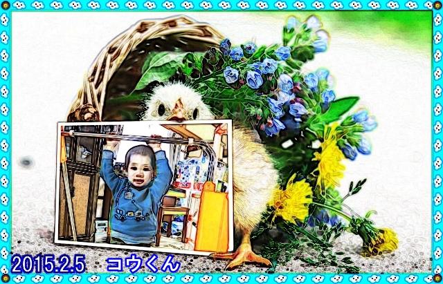 a0052666_018469.jpg