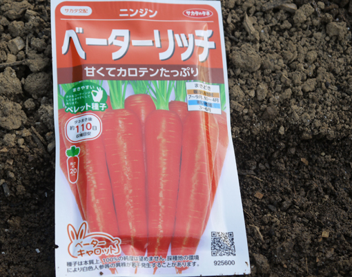 ジャガイモ(レッドムーン、インカリュージュ)植え付け2・21_c0014967_2324341.jpg
