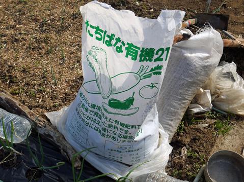 ジャガイモ(レッドムーン、インカリュージュ)植え付け2・21_c0014967_2382613.jpg