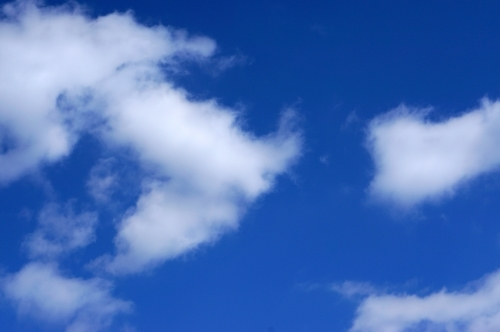 青と白♪♪_c0331973_19171387.jpg