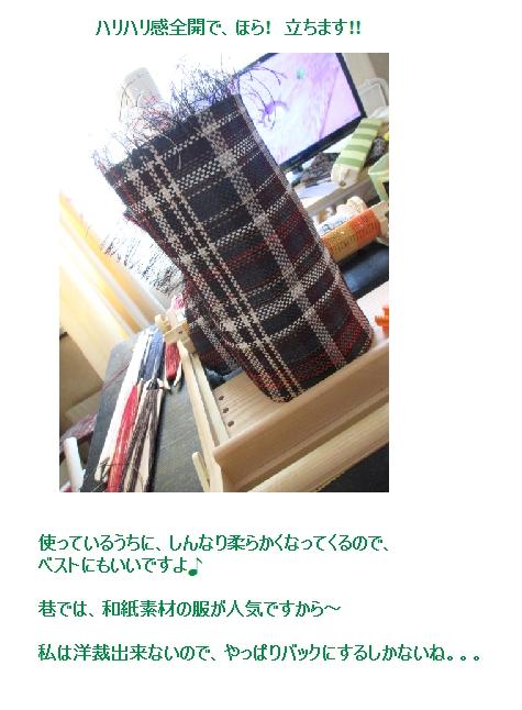 和紙の糸で二枚織り上がり~!!_c0221884_17402113.jpg
