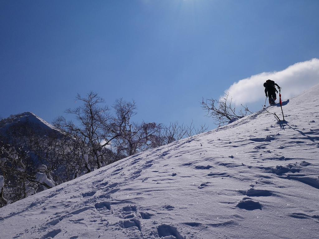 白老岳、2月20日_f0138096_131995.jpg