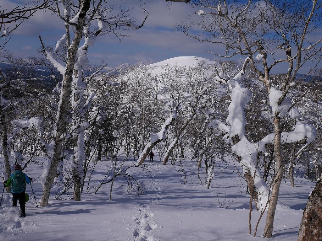 白老岳、2月20日_f0138096_1322686.jpg