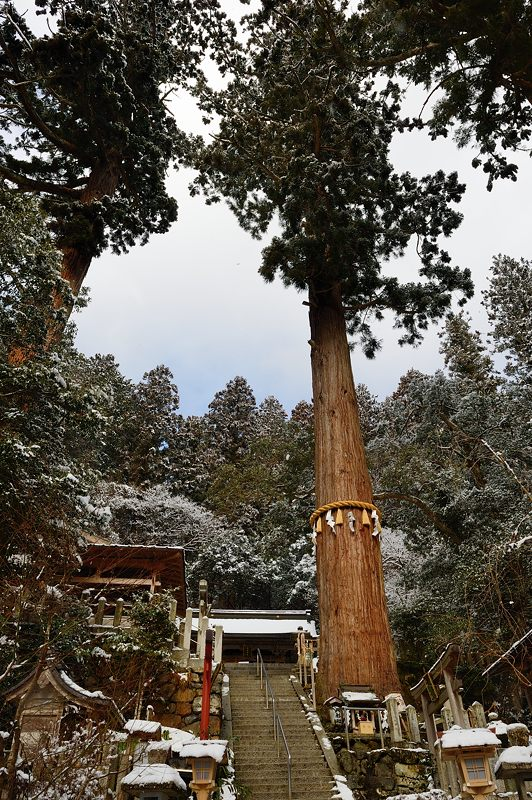 2015京の雪景色@鞍馬 其の一_f0032011_17235377.jpg