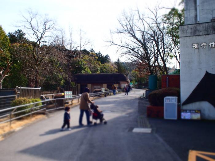 日本平動物園_a0182722_155868.jpg