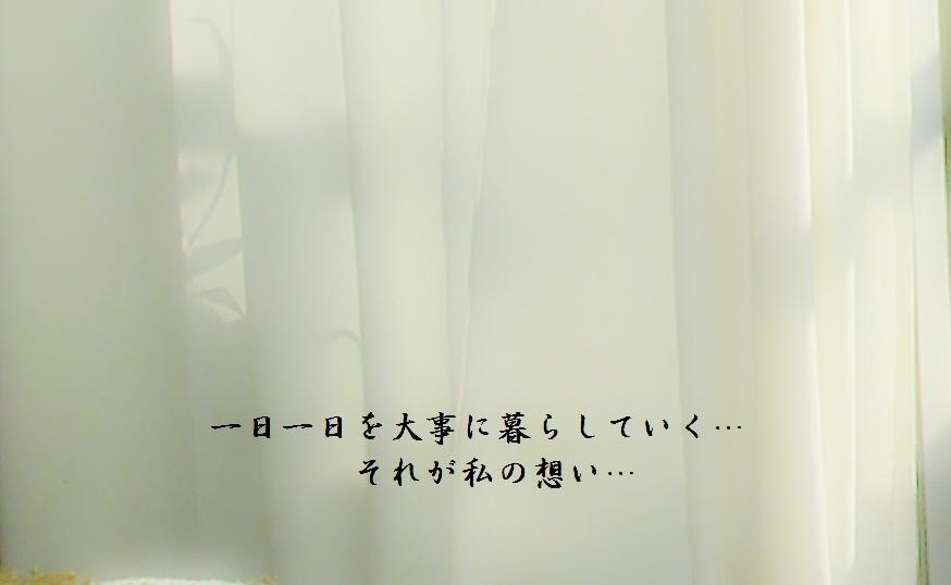 b0252727_16411733.jpg