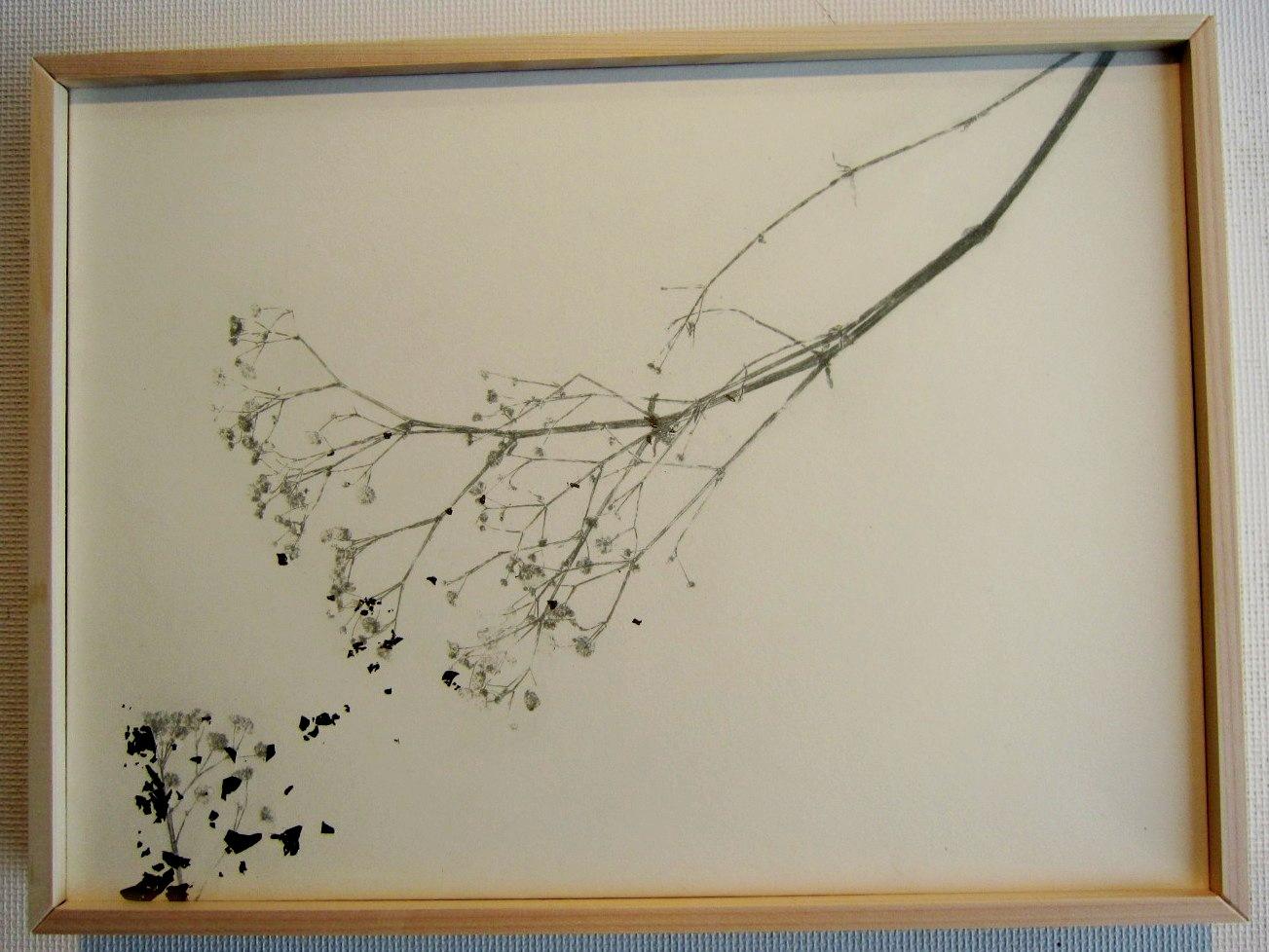 2466)「土岐美紗貴 COCOtU」 創 終了/2月4日(水)~2月15日(日)_f0126829_21422296.jpg