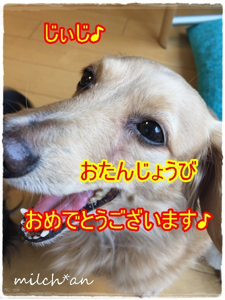 b0115642_18272670.jpg