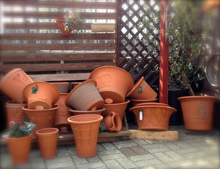 New pot_d0229351_21573267.jpg