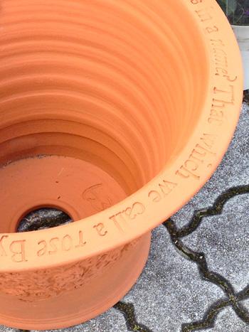 New pot_d0229351_21573618.jpg