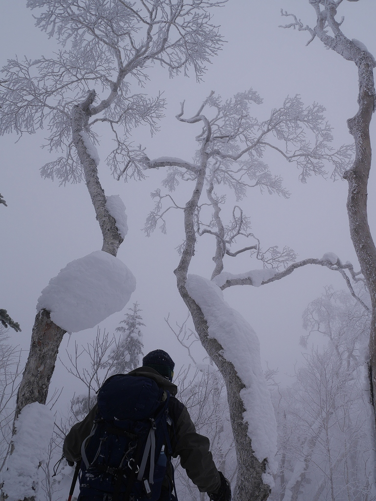 白老岳、2月22日_f0138096_2155015.jpg