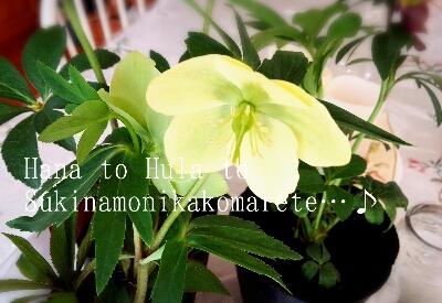 b0345108_18205669.jpg