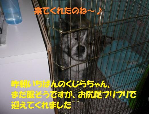 f0121712_7401363.jpg