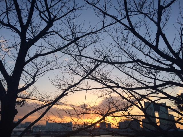 その1 感動!!「東京がひとつになる」東京マラソン ドキュメント EXPO編_c0222817_2028184.jpg