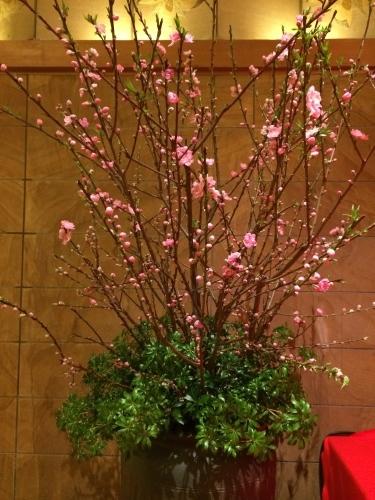 春が待ち遠しい……_d0028322_00245765.jpg