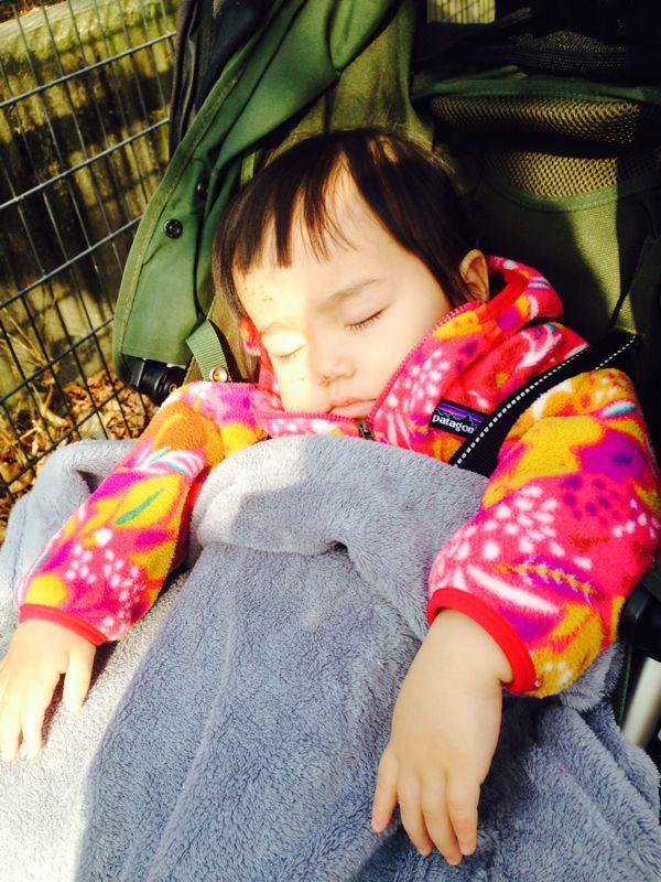 みつき1歳4ヶ月 〜歩き始めた!_e0253026_7443659.jpg