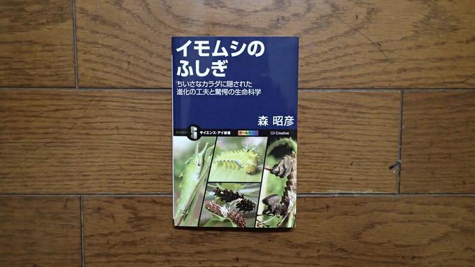 最近買った虫の本2(2015年2月23日) _d0303129_23152516.jpg