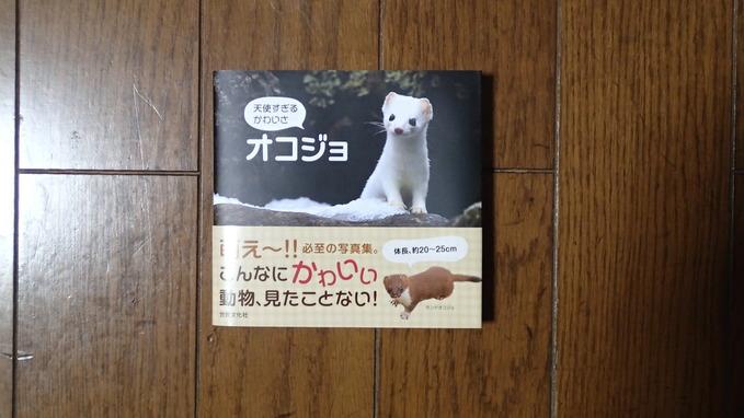 最近買った虫の本2(2015年2月23日) _d0303129_23173377.jpg