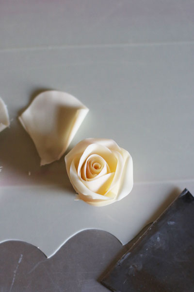 薔薇チョコムースケーキ_f0149855_1455151.jpg