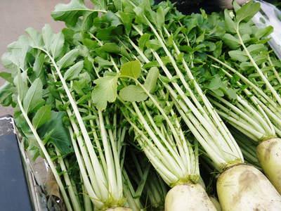 長尾ブランドの新鮮野菜!朝採りダイコン販売再スタート!!_a0254656_1711096.jpg