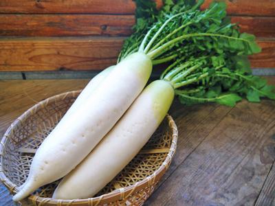 長尾ブランドの新鮮野菜!朝採りダイコン販売再スタート!!_a0254656_17355221.jpg