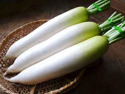 長尾ブランドの新鮮野菜!朝採りダイコン販売再スタート!!_a0254656_1803532.jpg