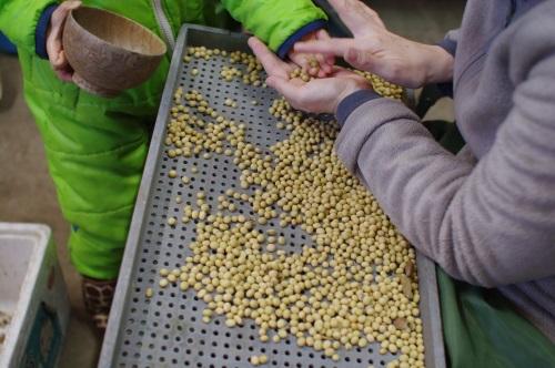味噌仕込み用の大豆の選別_c0110869_7212643.jpg