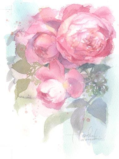 薔薇 水彩画_f0176370_16283034.jpg