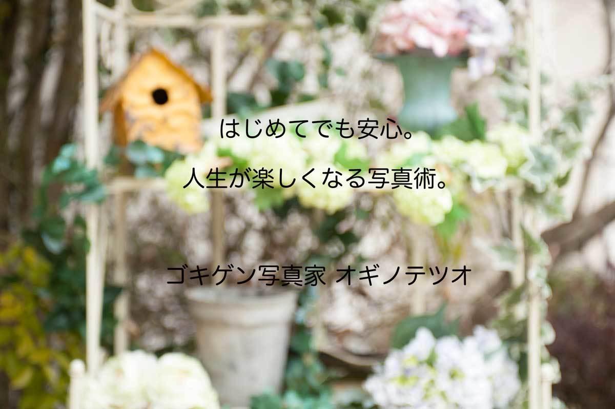a0331987_00032037.jpg