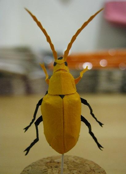 第5回 - mozo mozo - 虫・蟲 展 たまごの工房企画展 その6  _e0134502_17493525.jpg